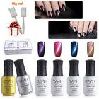 4pcs Cat Eye Gel Nail Polish Set + Base Top Coat + Free Magn